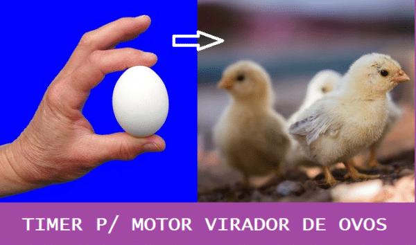 TIMER P/ MOTOR VIRADOR DE OVOS – C/ PIC 12F675 (REF344)