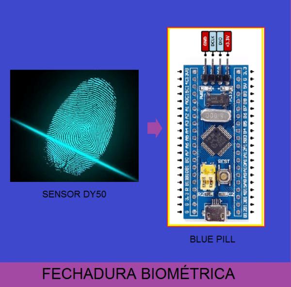 FECHADURA ELETRÔNICA BIOMÉTRICA COM BLUE PILL (REF363)